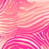 Vector. Zebra background. Royalty Free Stock Photos