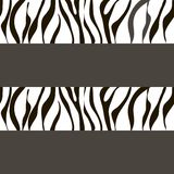 Vector zebra  background with traces Stock Image