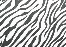 Vector zebra skin Stock Images