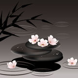 vector zen stones and cherry flowers Stock Photography