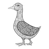 Vector zentangle magic goose, black print for adult anti stress Royalty Free Stock Photo