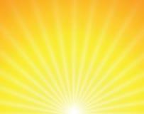 Vector zon op gele achtergrond Royalty-vrije Stock Fotografie