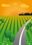 Vector zonsondergang en de groene vallei. Stock Illustratie