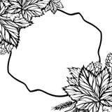 Vector zwart-witte achtergrond met hop Stock Foto
