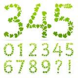 Vectoraantallen groene bladeren Royalty-vrije Stock Foto