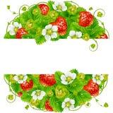 Vectoraardbei om kader Cirkelsamenstelling van rijpe rode bessen Stock Afbeeldingen