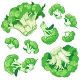 Vectorachtergrond met een patroon van broccoli royalty-vrije stock afbeeldingen