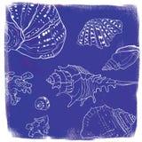 Vectorachtergrond met hand getrokken zeeschelpen vector illustratie