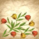 Vectorachtergrond met roze tulpen op ambachtdocument Royalty-vrije Stock Afbeelding
