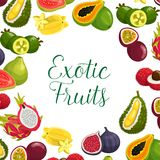 Vectoraffiche van exotische verse tropische vruchten Royalty-vrije Stock Foto's