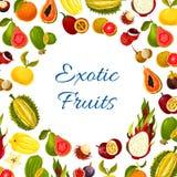 Vectoraffiche van exotische verse tropische vruchten Royalty-vrije Stock Afbeelding