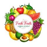 Vectoraffiche van verse tropische exotische vruchten Stock Foto's