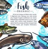 Vectoraffiche van vissenvangst voor visserijmarkt stock illustratie