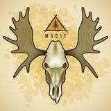 Vectoramerikaanse elandenschedel stock illustratie