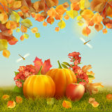 Vectorautumn thanksgiving card Stock Afbeelding