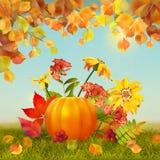 Vectorautumn thanksgiving card stock illustratie