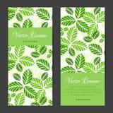 Vectorbanners, geplaatste kaarten Groen bladerenpatroon Stock Afbeeldingen