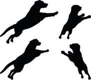 Vectorbeeld - het hondsilhouet in gebrek stelt op witte achtergrond Stock Foto's