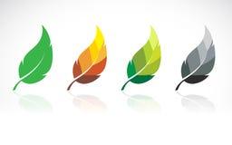 Vectorbeeld van bladerenontwerp Stock Afbeeldingen