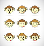 Vectorbeeld van een aapgezicht Stock Foto