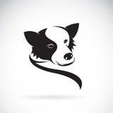 Vectorbeeld van een border collie-hond Royalty-vrije Stock Foto's
