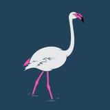 Vectorbeeld van een flamingo Stock Foto's