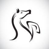 Vectorbeelden van paard Royalty-vrije Stock Foto's