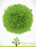 Vectorbeeldverhaalboom Stock Foto