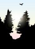 Vectorbergen en boslandschap vroeg de zonsondergang Stock Afbeeldingen