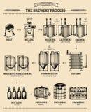 Vectorbierinfographics met illustraties van brouwerijproces Aal die ontwerp veroorzaken Lagerbierproductie geschetste regeling Stock Afbeelding