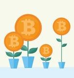 Vectorbitcoin-symbool met bloem het groeien cryptografieillustra Stock Fotografie