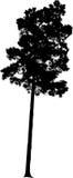 Vectorboomsilhouet stock illustratie