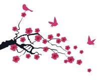 Vectorcherry blossom Royalty-vrije Stock Foto's