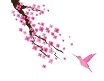 Vectorcherry blossom and pink hummingbird Stock Fotografie