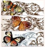 Vectordieachtergronden met vlinders worden geplaatst Stock Afbeelding