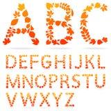 Vectordiealfabetbrieven van kleurrijke de herfstbladeren worden gemaakt Stock Foto