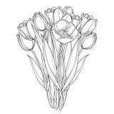 Vectordieboeket met de bloemen van overzichtstulpen op wit worden geïsoleerd Malplaatje met overladen bloemenelementen voor de le royalty-vrije illustratie