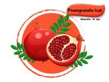 VectordieGranaatappelfruit op kleurenachtergrond wordt geïsoleerd, illustrator 10 eps Stock Afbeeldingen