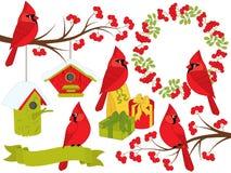 VectordieKerstmis en Nieuwjaar met Kardinalen en de Winterelementen wordt geplaatst royalty-vrije illustratie
