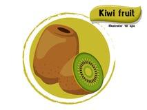 VectordieKiwifruit op kleurenachtergrond wordt geïsoleerd, illustrator 10 eps Stock Afbeelding
