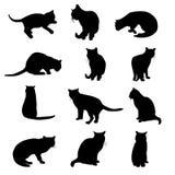 Vectordiesilhouetten van katten op witte achtergrond worden geïsoleerd Stock Afbeeldingen