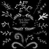 Vectorelementen, takjes getrokken inkt Royalty-vrije Stock Afbeeldingen