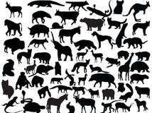 Vectoren van dieren stock illustratie