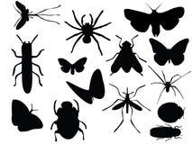 Vectoren van insecten Royalty-vrije Stock Fotografie