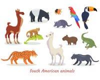 Vectores suramericanos de la historieta de los animales fijados libre illustration