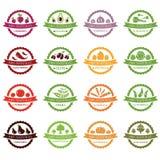 Vectoretiketten met groenten Stock Afbeeldingen