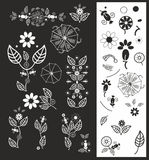 Vectorf floral elements(67).jpg Stock Photos