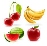 Vectorfruitpictogrammen Stock Fotografie