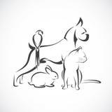 Vectorgroep huisdieren - Hond, kat, vogel, geïsoleerd konijn, Stock Afbeelding