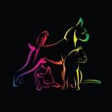 Vectorgroep huisdieren - Hond, kat, vogel, rabijn Stock Foto's